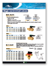 Sagiv Control Ball Valves